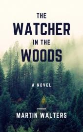 book-cover-design-novel (53)