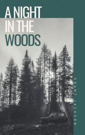 book-cover-design-novel (60)